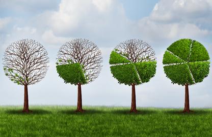 Inversiones verdes: ¿qué son estos financiamientos sostenibles?
