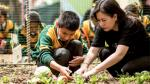 Educación alimentaria: la clave para mejorar la salud - Noticias de vida sana