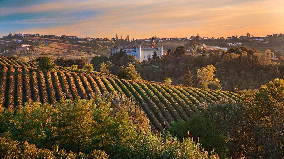 Asti, situada al noreste de Italia, posee 10.000 hectáreas de cultivos de uva. La mayor parte va para la producción de vino y espumante.