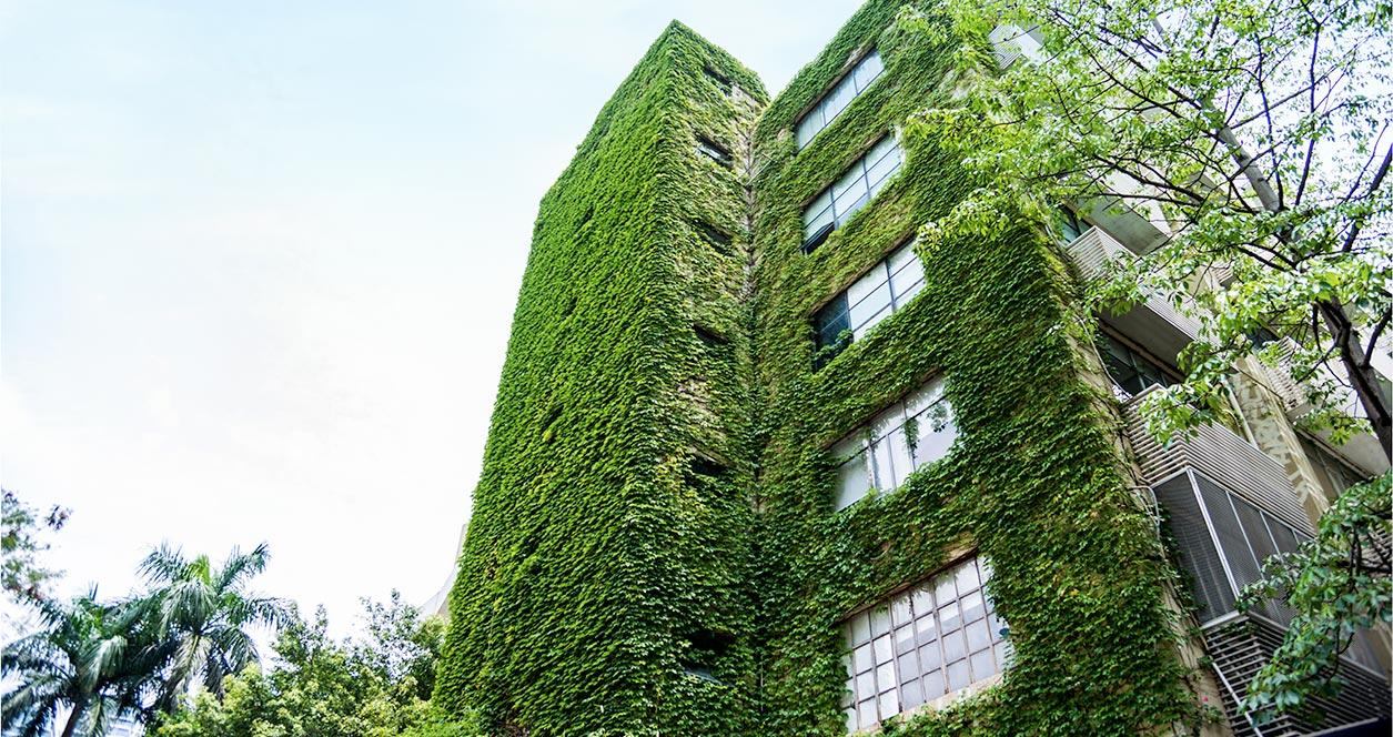 Edificios verdes: la clave para ahorrar agua y luz