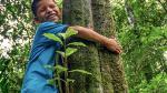 Compensar la huella de carbono: un compromiso con el medio ambiente - Noticias de gases de efecto invernadero