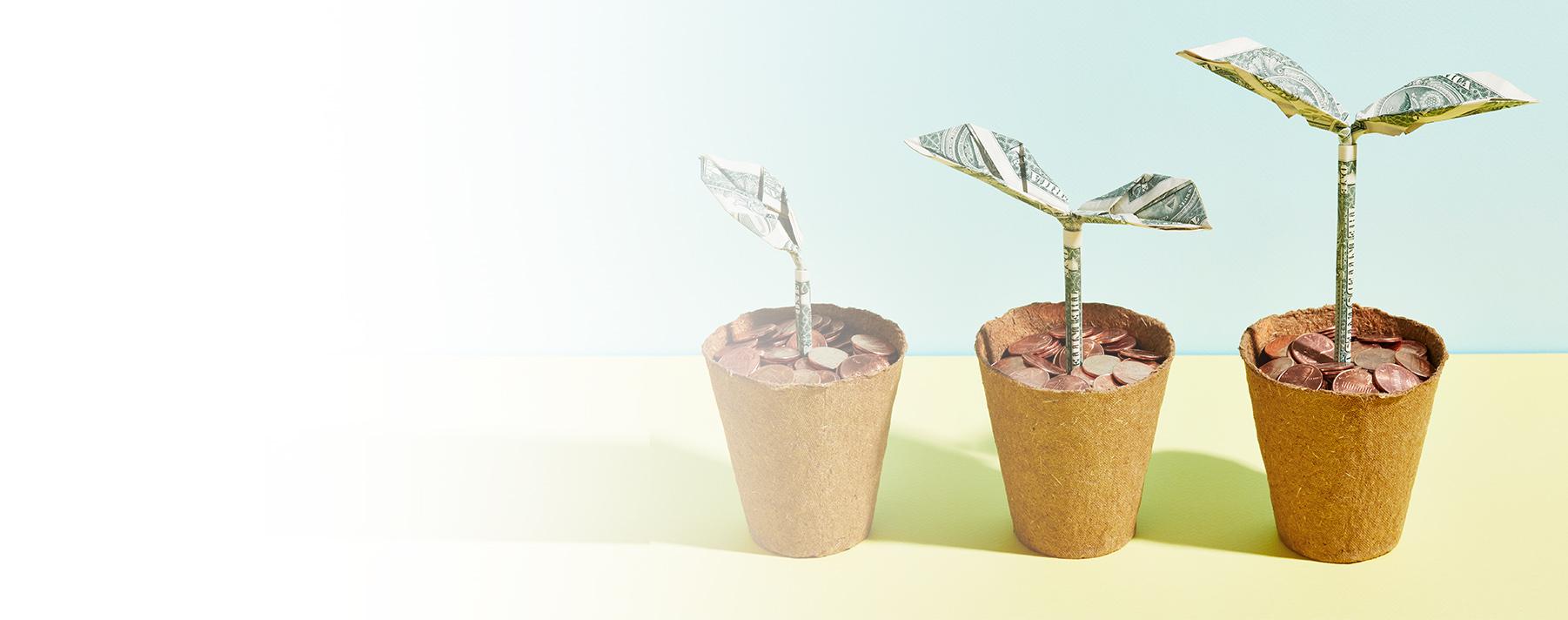 Todo lo que debes saber sobre renta fija y renta variable