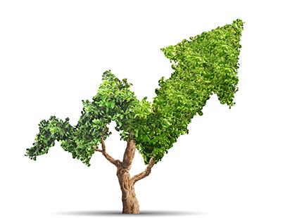 ¿Cómo la empresa privada puede impulsar la sostenibilidad?
