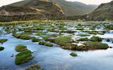 ¿Por qué debemos cuidar las cuencas que habitamos?